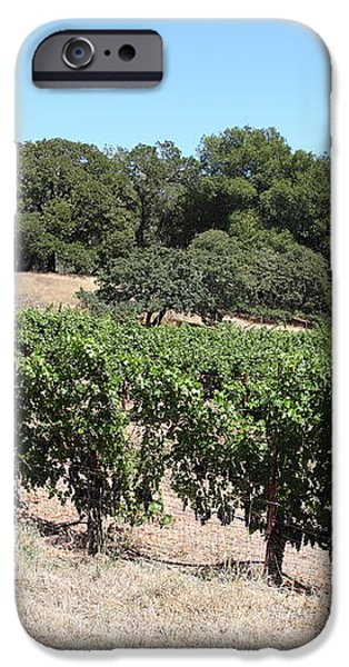 Vineyard and Stallion Barn At Historic Jack London Ranch In Glen Ellen Sonoma California 5D24579 iPhone Case by Wingsdomain Art and Photography