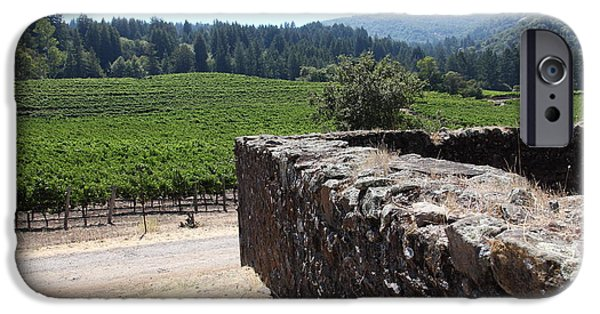 Sonoma iPhone Cases - Vineyard and Winery Ruins At Historic Jack London Ranch In Glen Ellen Sonoma California 5D24537 iPhone Case by Wingsdomain Art and Photography