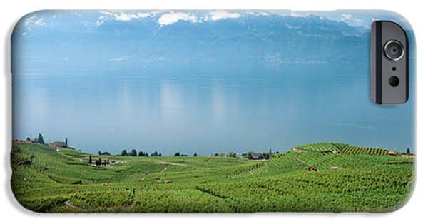 Recently Sold -  - Village iPhone Cases - Vineyard At The Lakeside, Lake Geneva iPhone Case by Panoramic Images