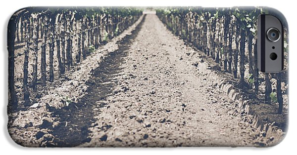 Grapevine Red Leaf iPhone Cases - Vineyard in Autumn with Vintage Film Style Filter iPhone Case by Brandon Bourdages