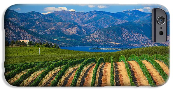 Viticulture iPhone Cases - Vineyard in the Mountains iPhone Case by Inge Johnsson