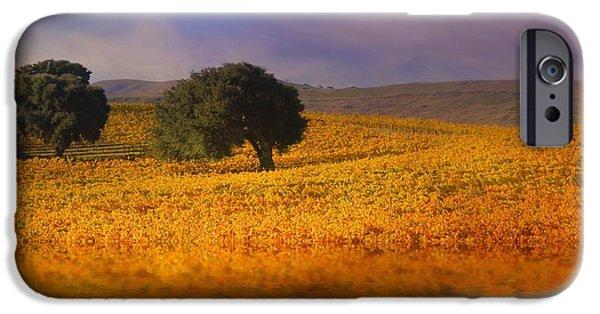 California Vineyard iPhone Cases - Vineyard Magic iPhone Case by Stephanie Laird