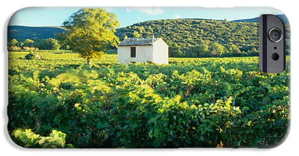 Winery Photography iPhone Cases - Vineyard Provence France iPhone Case by Panoramic Images
