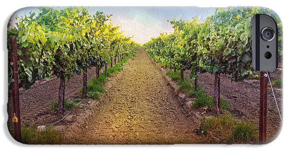 Grape Vine iPhone Cases - Vineyard Road iPhone Case by Shari Warren