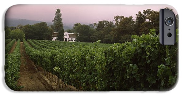 Cape Town iPhone Cases - Vineyard With A Cape Dutch Style House iPhone Case by Panoramic Images