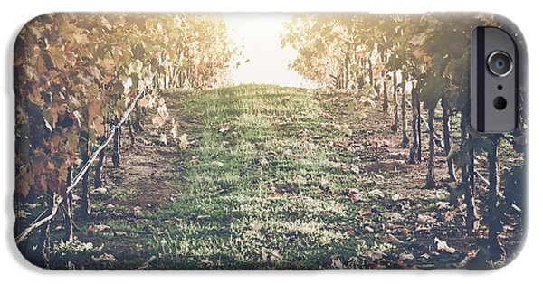 Grapevine Red Leaf iPhone Cases - Vineyard with Blue Sky in Autumn with Vintage Film Style Filter iPhone Case by Brandon Bourdages