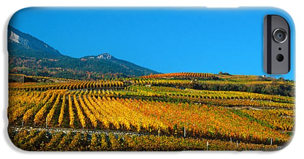 Autumn iPhone Cases - Vineyards In Autumn, Valais Canton iPhone Case by Panoramic Images