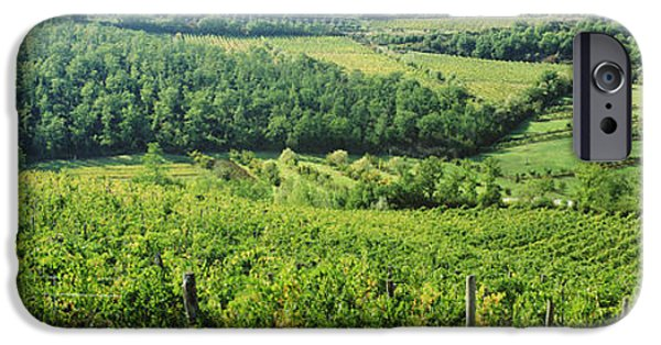 Chianti Landscape iPhone Cases - Vineyards In Chianti Region, Tuscany iPhone Case by Panoramic Images
