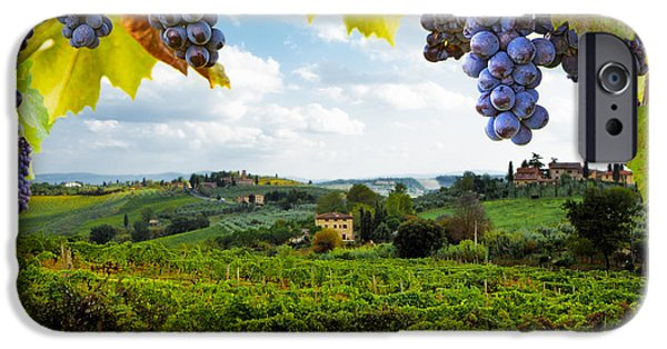 Grow iPhone Cases - Vineyards in San Gimignano Italy iPhone Case by Susan  Schmitz