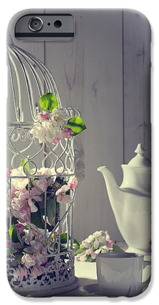 Bird Cage iPhone Cases - Vintage Afternoon Tea iPhone Case by Amanda And Christopher Elwell
