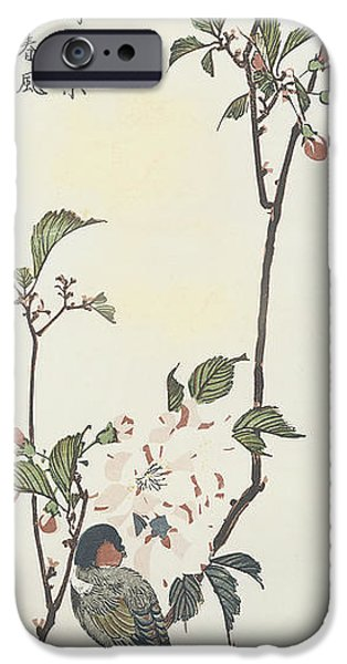 Tree Art Print iPhone Cases - Vintage Asian Blossoms-A iPhone Case by Jean Plout