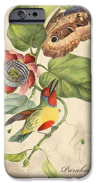 Nature Study Digital Art iPhone Cases - Vintage Bird Study-B iPhone Case by Jean Plout