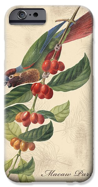 Nature Study Digital Art iPhone Cases - Vintage Bird Study-H iPhone Case by Jean Plout