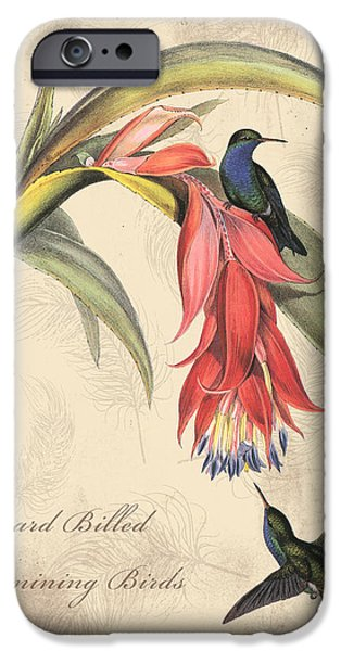 Nature Study Digital Art iPhone Cases - Vintage Bird Study-I iPhone Case by Jean Plout