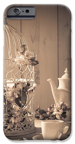 Bird Cage iPhone Cases - Vintage Birdcage iPhone Case by Amanda And Christopher Elwell