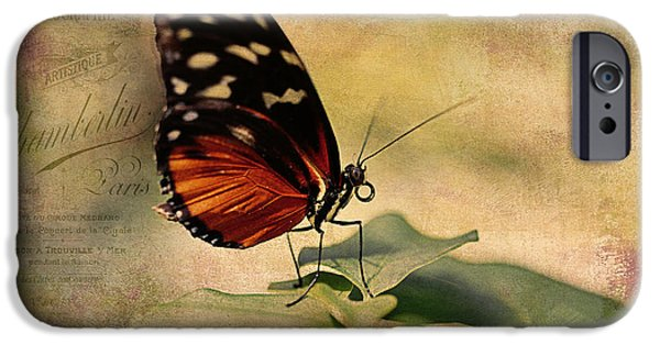 Close Up Floral iPhone Cases - Vintage Butterfly Card iPhone Case by Maria Angelica Maira