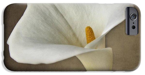 Close Up Floral iPhone Cases - Vintage Calla palustris iPhone Case by Erik Brede