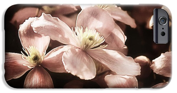 Macro Mixed Media iPhone Cases - Vintage Clematis iPhone Case by Georgiana Romanovna