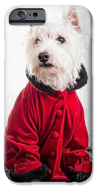 Dogs iPhone Cases - Vintage Fashion Dog iPhone Case by Edward Fielding