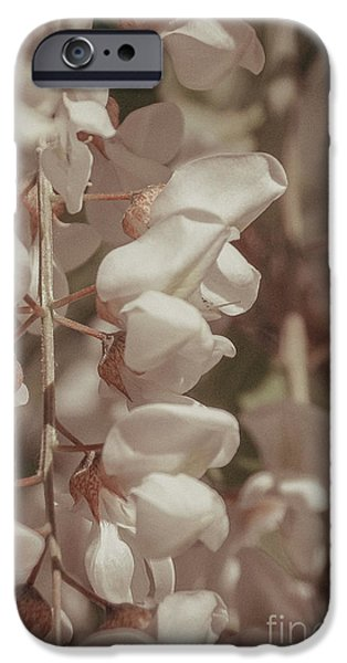 Floral Art iPhone Cases - Vintage Flowers iPhone Case by Gloria Pasko