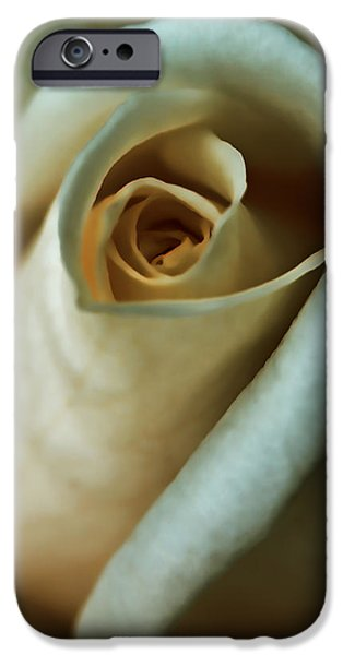Peach Roses iPhone Cases - Vintage Macro Rose FLower iPhone Case by Jennie Marie Schell