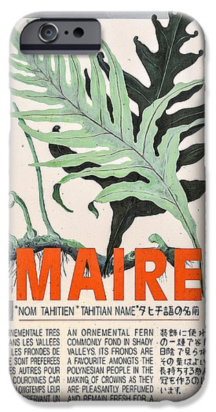 Chinese Market iPhone Cases - Vintage Market Sign 1 - Papeete - Tahiti - Maire - Fern iPhone Case by Ian Monk