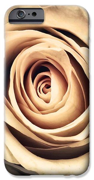 Vintage Rose iPhone Case by Wim Lanclus