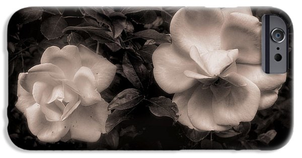 Duo Tone iPhone Cases - Vintage Roses in Antique Tones No 2 iPhone Case by Louise Kumpf