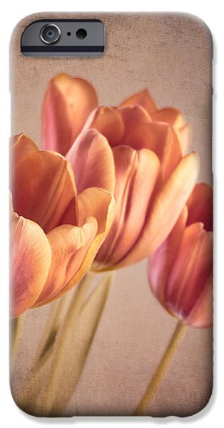 Vintage Tulips iPhone Case by Wim Lanclus