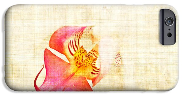 White Orchid iPhone Cases - Vintage white orchid iPhone Case by Delphimages Photo Creations