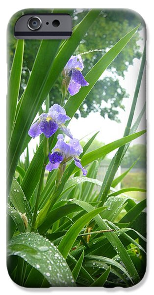 Rainy Day iPhone Cases - Iris with Dew iPhone Case by Laurie Perry