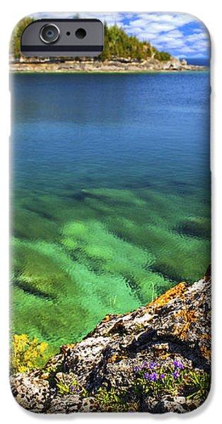 Violets at Georgian Bay iPhone Case by Elena Elisseeva