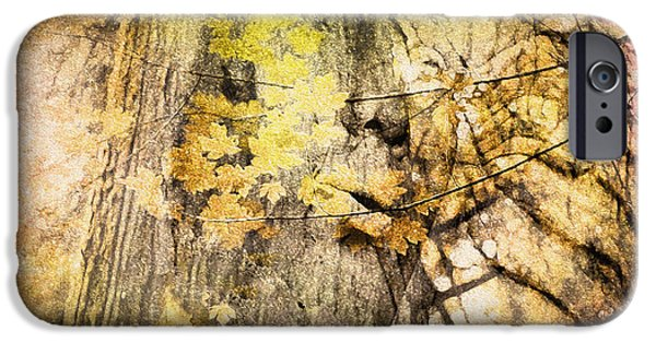 Gaia Digital iPhone Cases - Her Forest iPhone Case by Kathy Bassett