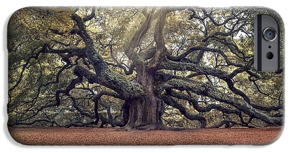Live Oaks iPhone Cases - Voices of the Angels iPhone Case by Magda  Bognar