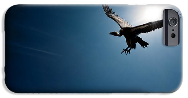 Flight Digital Art iPhone Cases - Vulture flying in front of the sun iPhone Case by Johan Swanepoel