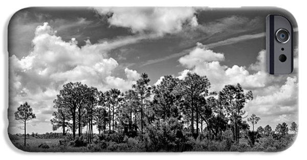 National Preserves iPhone Cases - Wagon wheel Road 1 BW iPhone Case by Rudy Umans