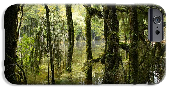 Swamps iPhone Cases - Waihora Lagoon iPhone Case by Les Cunliffe