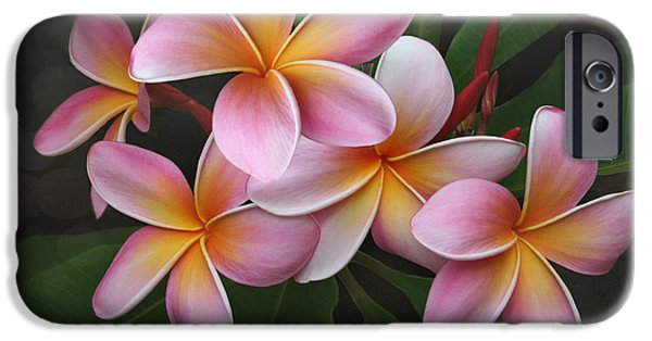 Poetic Photographs iPhone Cases - Wailua Sweet Love iPhone Case by Sharon Mau