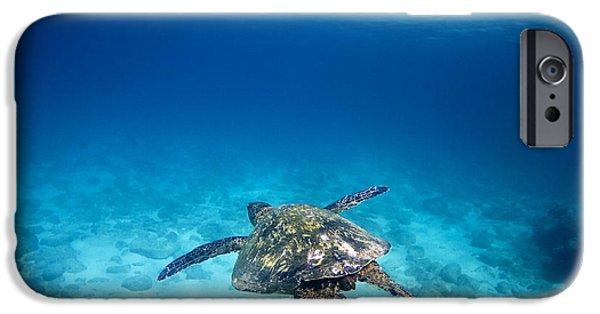 Ocean Art Photography iPhone Cases - Waimea Turtle 11 iPhone Case by Sean Davey