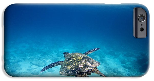 Under Water. Nature iPhone Cases - Turtle Soar iPhone Case by Sean Davey