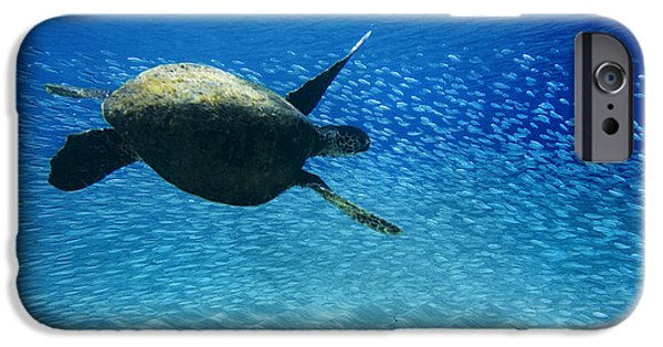 Under Water. Nature iPhone Cases - Waimea Turtle iPhone Case by Sean Davey