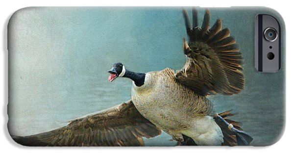 Geese iPhone Cases - Wait For Me - Wildlife - Goose in Flight iPhone Case by Jai Johnson