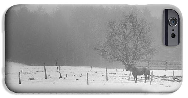 Winter In Maine iPhone Cases - Waiting iPhone Case by Alana Ranney