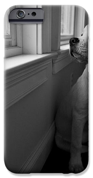 Waiting iPhone Case by Diane Diederich