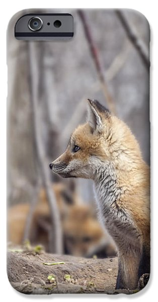 Waiting for Mom iPhone Case by Thomas Young