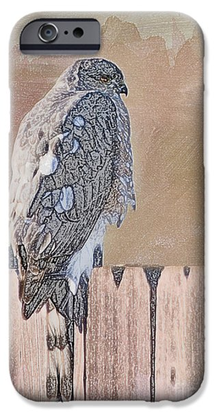 Colored Pencil Abstract iPhone Cases - Waiting for Mr. Goodbird iPhone Case by Betty LaRue
