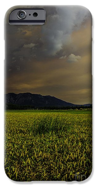 Unset iPhone Cases - Waiting For The Rain To Come iPhone Case by Mitch Shindelbower