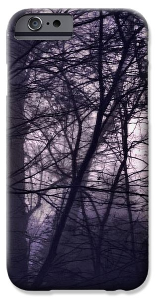 Mist iPhone Cases - Waking Morning iPhone Case by Susan Maxwell Schmidt