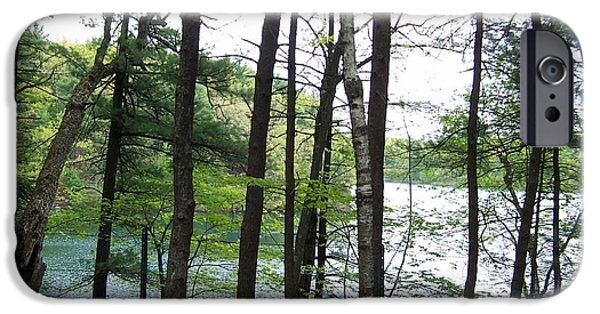 Walden Pond iPhone Cases - Walden Pond through trees iPhone Case by Catherine Gagne