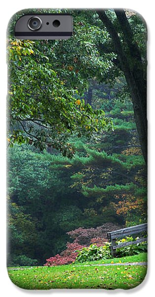 Walk in the Park iPhone Case by Christina Rollo